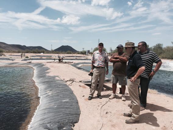 Photo of Vice President Burgess visiting an Arizona aquaculture facility