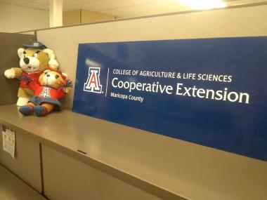 University of Arizona mascots Wilbur and Wilma greet visitors to the Maricopa County Extension office in Phoenix.